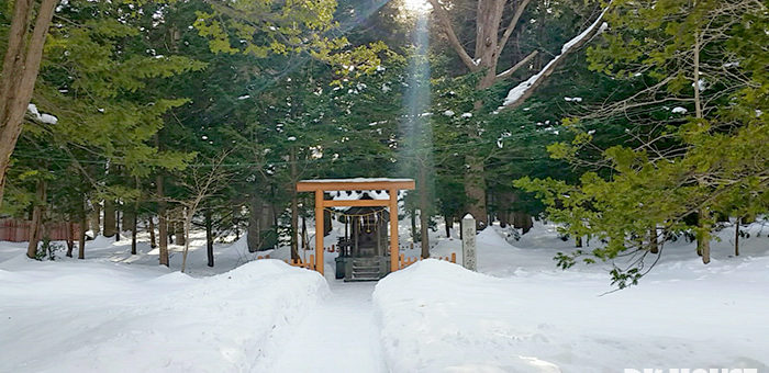 SAPPORO SNOW FESTIVAL 2 @DK HOUSE  SHINKOIWA/新小岩