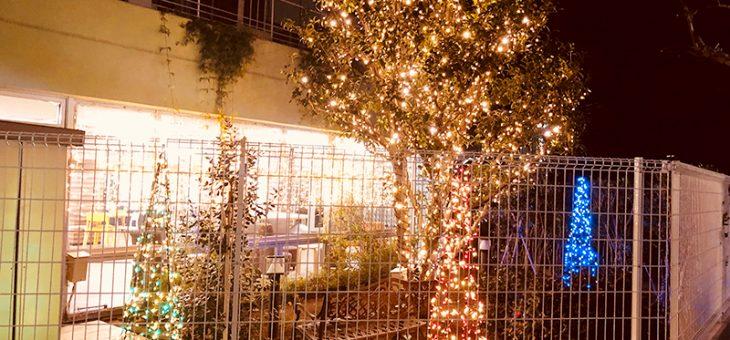 クリスマスデコ&イルミネーション@DK HOUSE TOKYO・NERIMA/東京・練馬