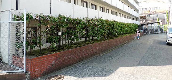 今日は天気が良いので@DKハウス神戸